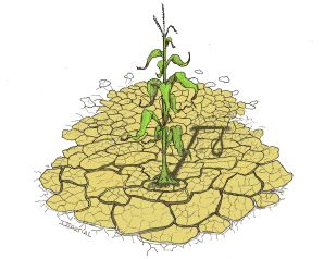 Avis de sécheresse